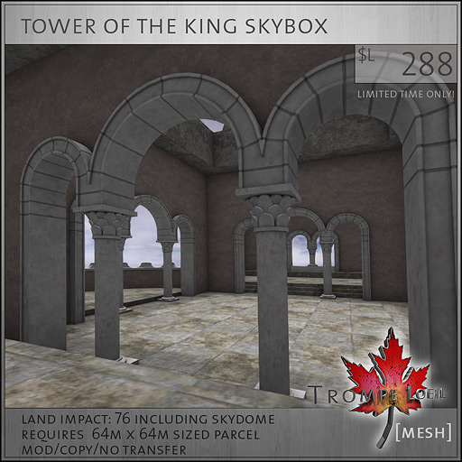 tower-of-the-king-skybox-sales-L288