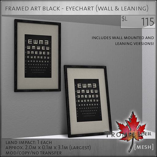 framed-art-black-eyechart-L115