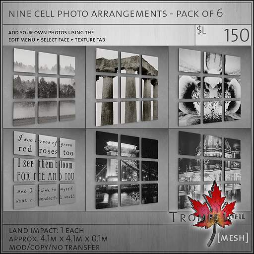nine-cell-photo-arrangements-pack-of-6-L150