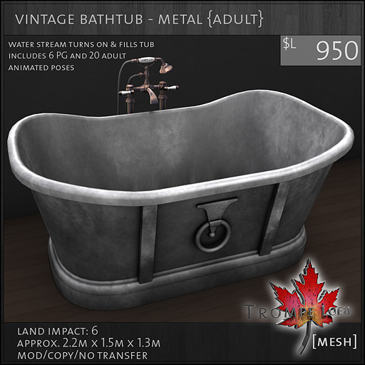 vintage-bathtub-metal-Adult-L950