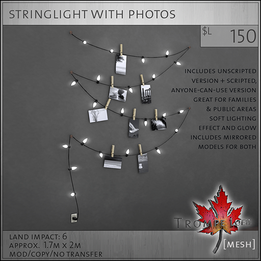 stringlight with photos sales image L150