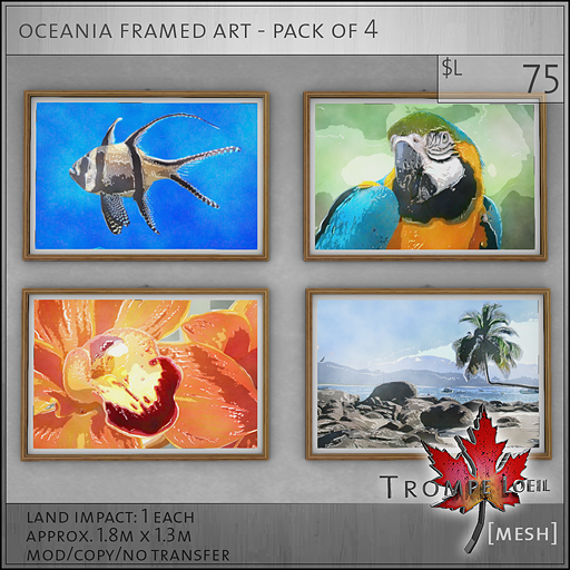 oceania framed art L75