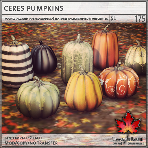ceres pumpkins L175