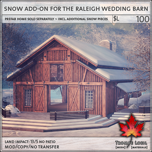 snow add-on for the raleigh wedding barn L100