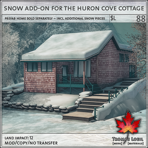huron cove cottage snow add on L88